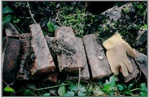 Wedge shaped bricks from 'crown' of 'beehive' cap